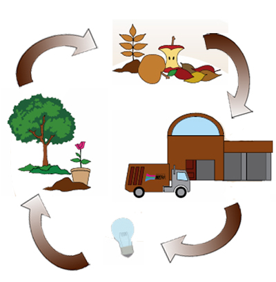 ciclo organico